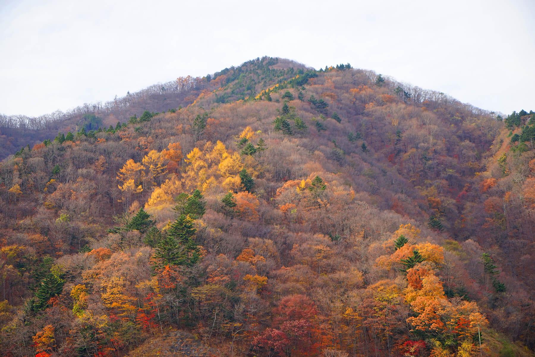 秋-1 紅葉の山